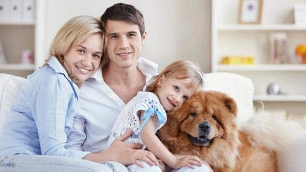 Wills & Trusts dog-young-family Direct Wills Chingford